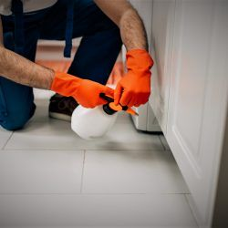 Exterminator in protective workwear spraying pesticide with sprayer in home kitchen.